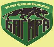 bagira-nn.ru